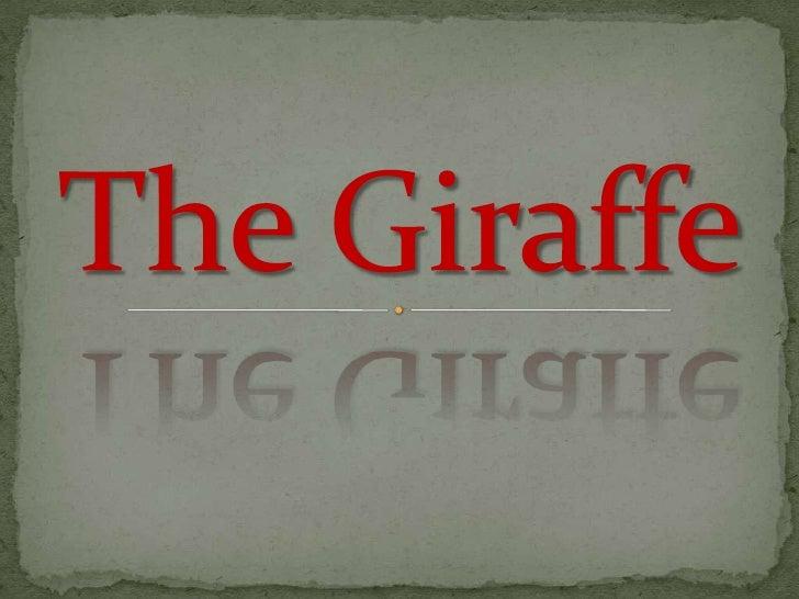 The Giraffe<br />