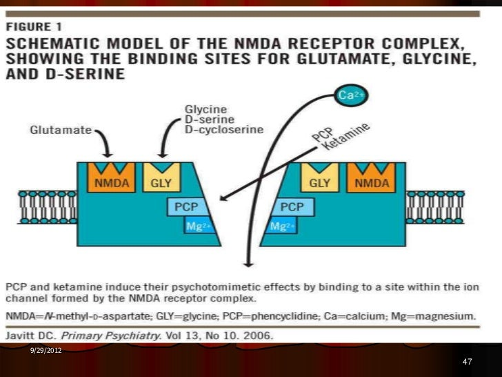 Frontiers - Glutamate Neurocircuitry: Theoretical