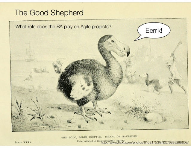 The Good Shepherd - the Role of BAs in Agile