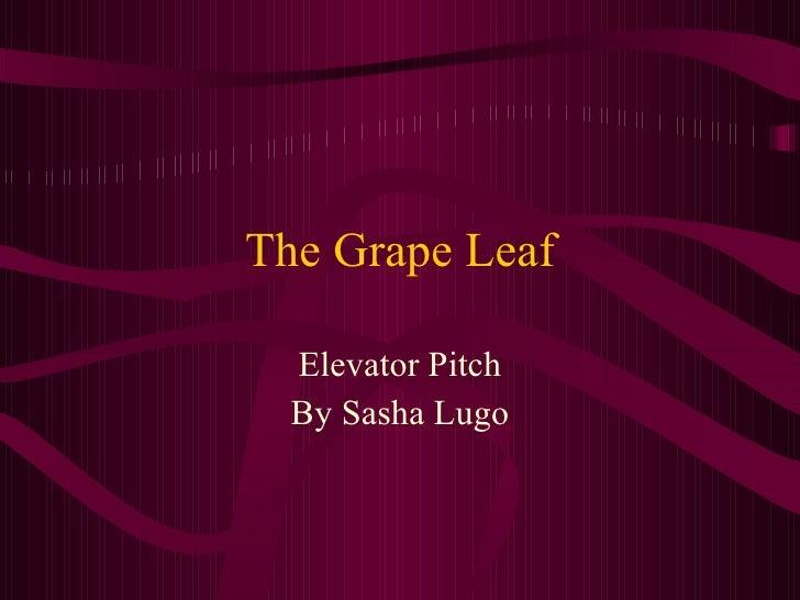 The Grape Leaf Elevator Pitch By Sasha Lugo