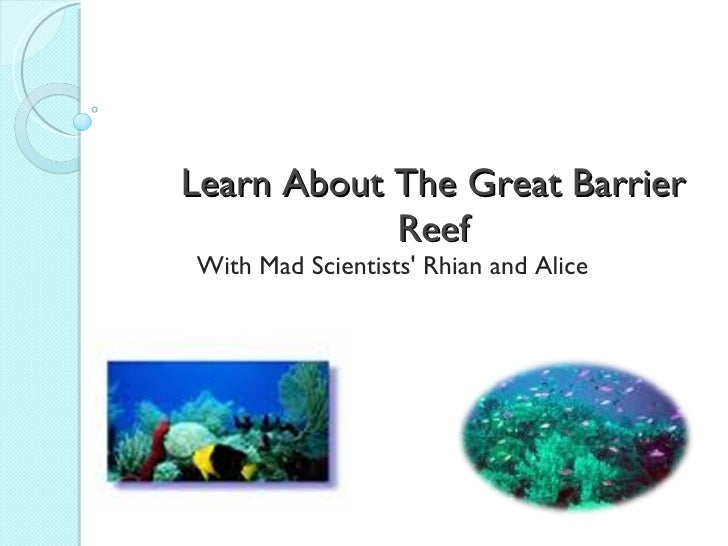 The great barrier reef by Alice and Rhian