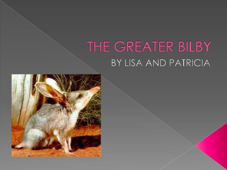THE GREATER BILBY<br />BY LISA AND PATRICIA<br />