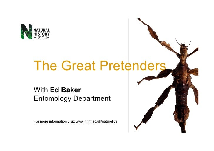 The Great Pretenders With  Ed Baker Entomology  Department For more information visit:  www.nhm.ac.uk/naturelive