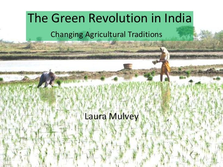 Laura Mulvey<br />The Green Revolution in India<br /> Changing Agricultural Traditions<br />