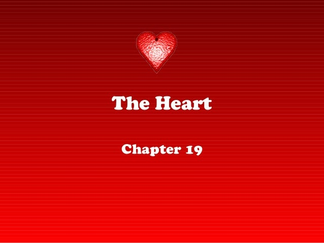 The Heart Chapter 19