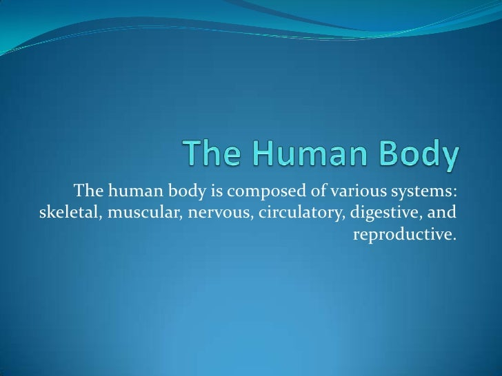 The Human Body<br />The human body is composed of various systems: skeletal, muscular, nervous, circulatory, digestive, an...