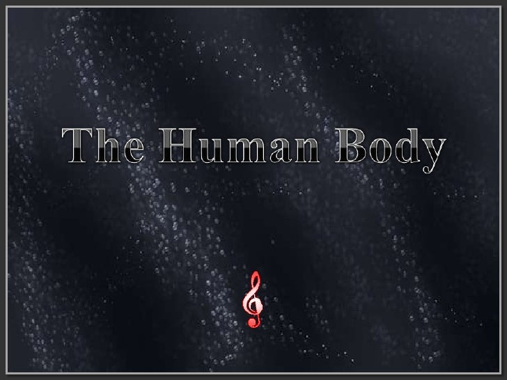 The Human Body<br />