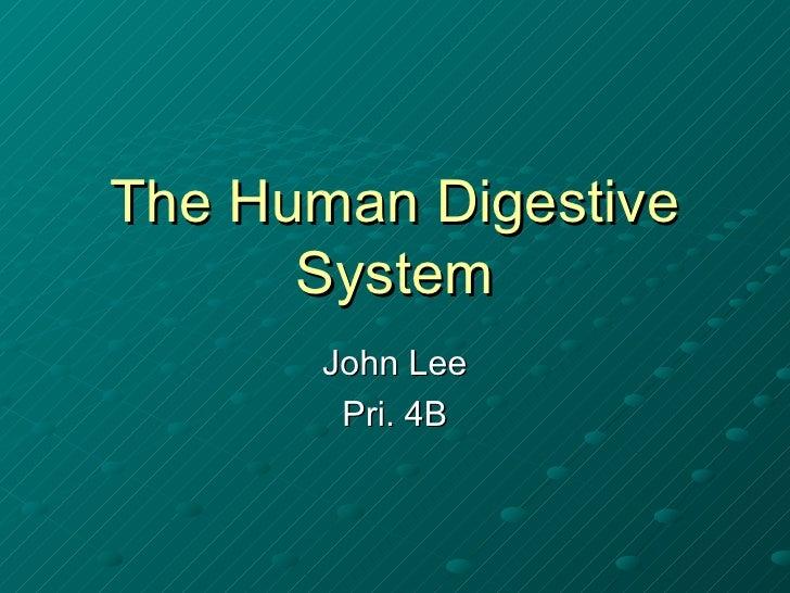 The Human Digestive System John Lee Pri. 4B