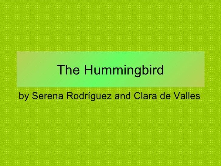 The Hummingbird by Serena Rodríguez and Clara de Valles