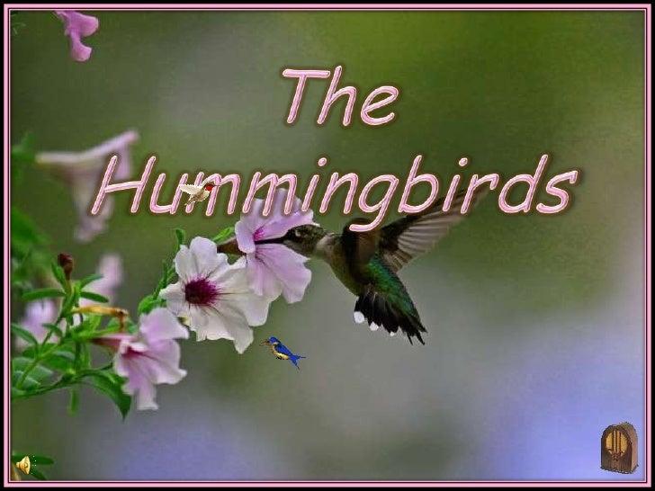 The Hummingbirds  (V M )