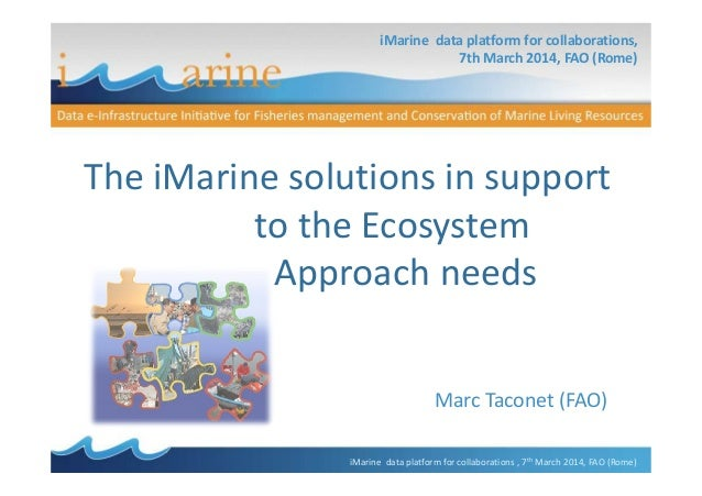 The iMarine solutions in support to the ecosystem approach needs