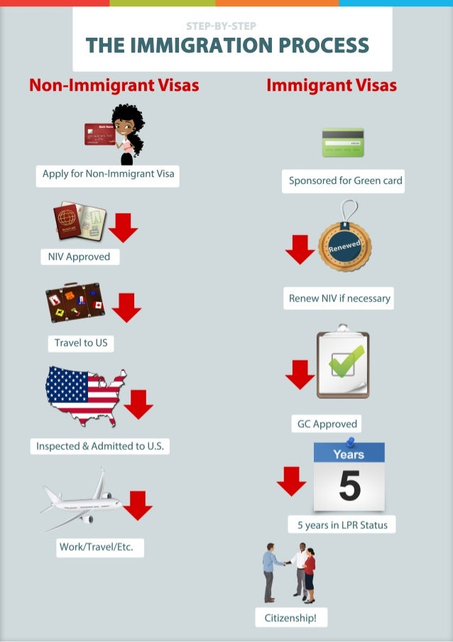 The Immigration Process Infographic