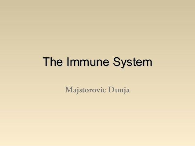 The Immune System   Majstorovic Dunja