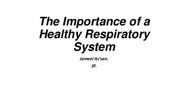 importance of healthy respiratory system Respiratory system inspection palpation percussion auscultation vital signs palpation percussion is one of the most important techniques, establishing whether tissues are fluid-filled, air-filled sharing in health cannot be held responsible for adverse events of any kind.
