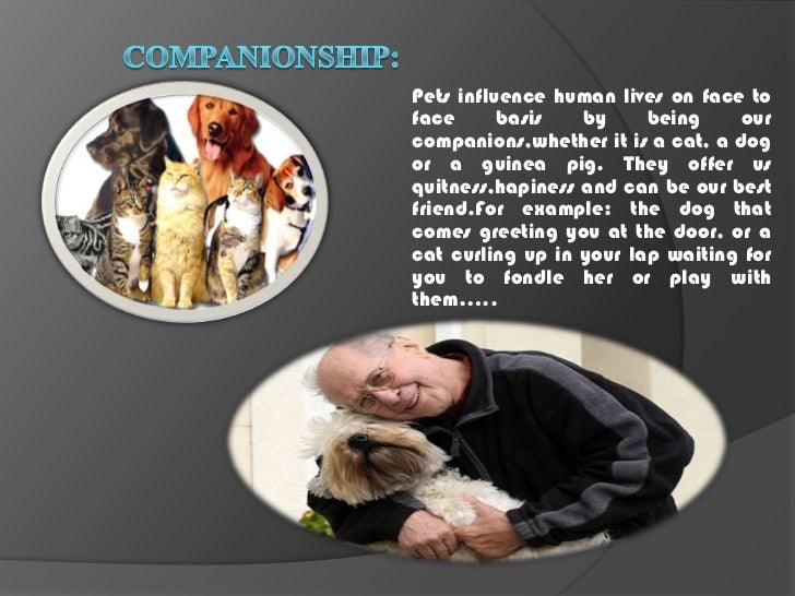 importance of animals in our life essay Free sample essay on the importance of wildlife preservation pose a threat to our domestic animals and enrich and make our life more enjoyable.