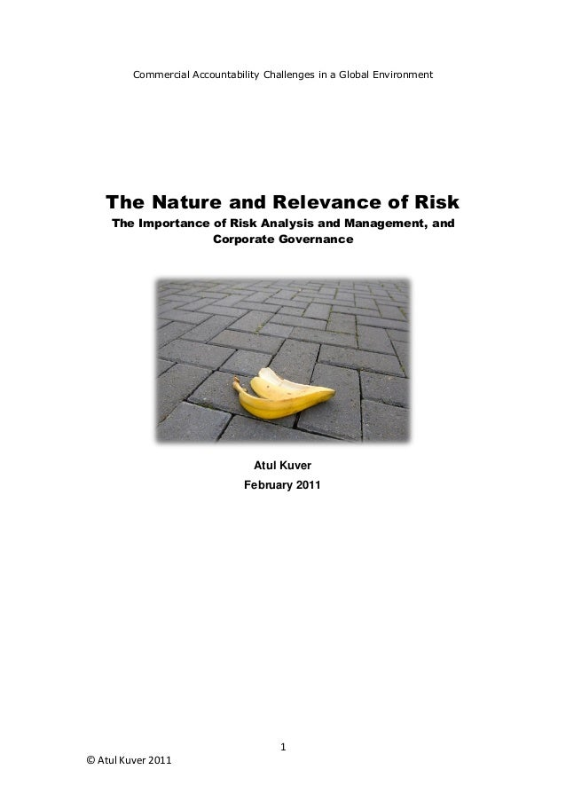 Commercial Accountability Challenges in a Global Environment    The Nature and Relevance of Risk     The Importance of Ris...