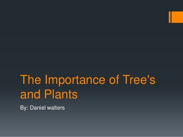 The Importance of Treesand PlantsBy: Daniel walters