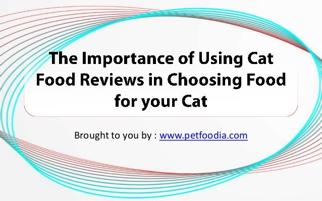 The Importance of Using Cat Food Reviews in Choosing Food for your Cat