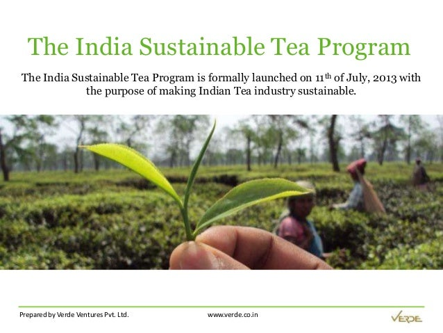 Prepared by Verde Ventures Pvt. Ltd. www.verde.co.in The India Sustainable Tea Program The India Sustainable Tea Program i...