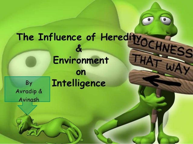 do heredity and environment affect intelligence How do heredity and environment affect learning  heredity can affect intelligence because of factors such as socioeconomic status of the family,.