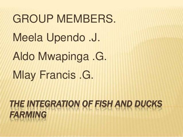 GROUP MEMBERS.Meela Upendo .J.Aldo Mwapinga .G.Mlay Francis .G.THE INTEGRATION OF FISH AND DUCKSFARMING