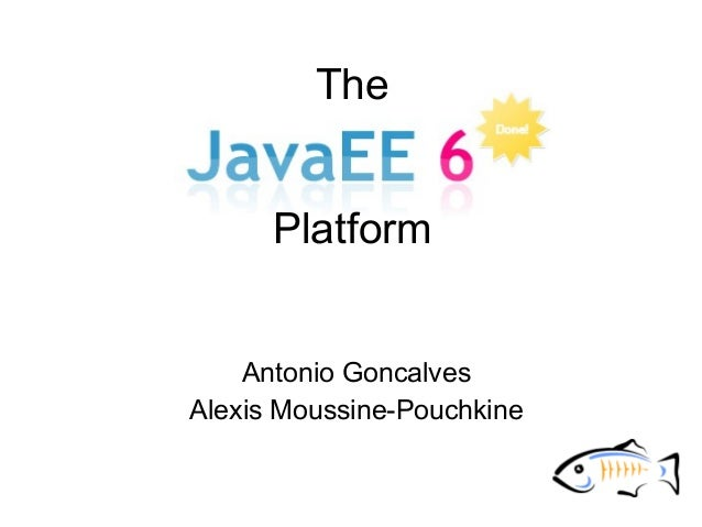 The Java EE 6 platform