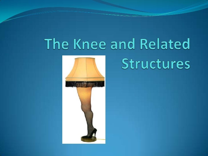 The knee and related structures f09
