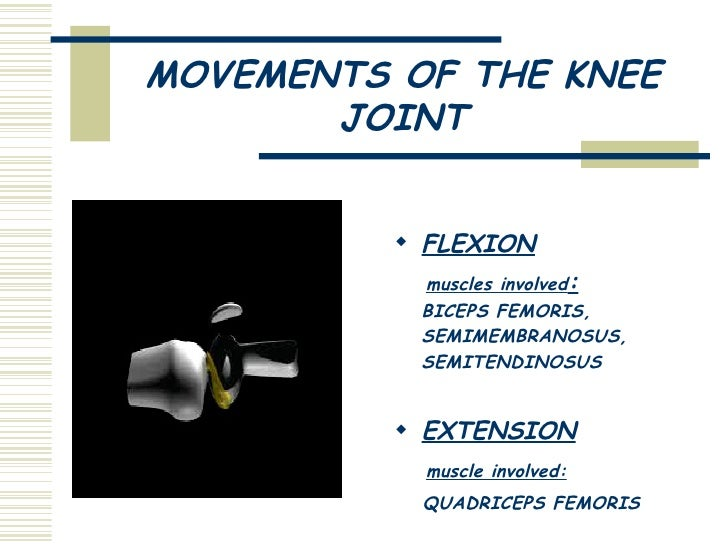 muscle joints movement components involved soccer bicycle The five components physical fitness moving your furniture or lifting a bicycle it is the ability for your joints, muscle groups.