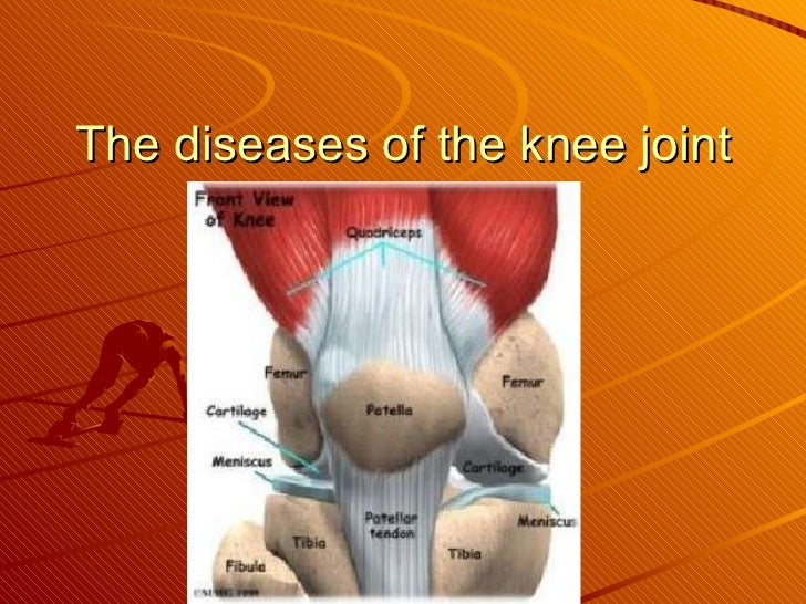 The diseases of the knee joint