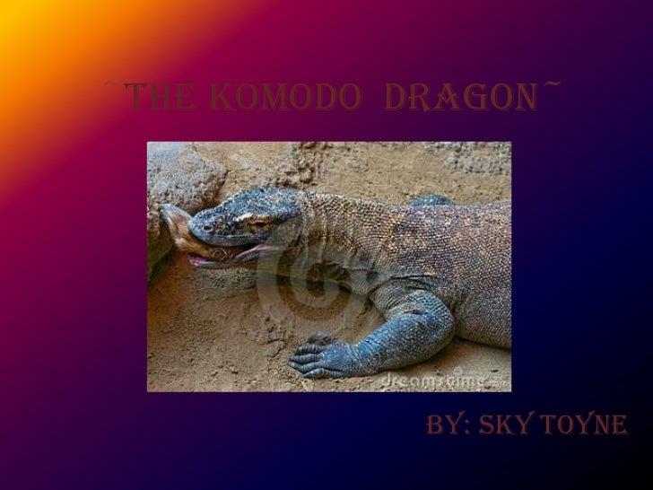~The Komodo Dragon~             By: Sky Toyne