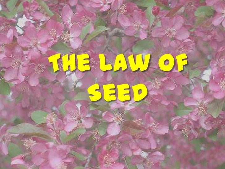 The Law of Seed <br />