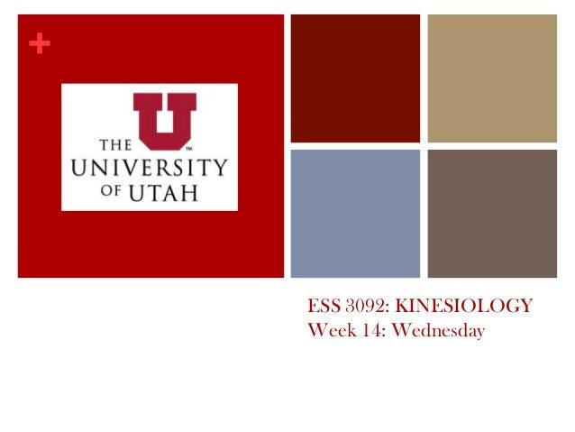+ ESS 3092: KINESIOLOGY Week 14: Wednesday
