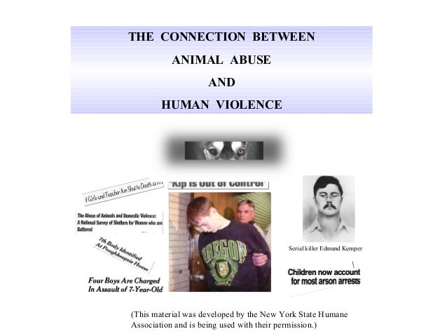 THE CONNECTION BETWEEN          ANIMAL ABUSE                    AND       HUMAN VIOLENCE            Dr. Harold J. Hovel   ...