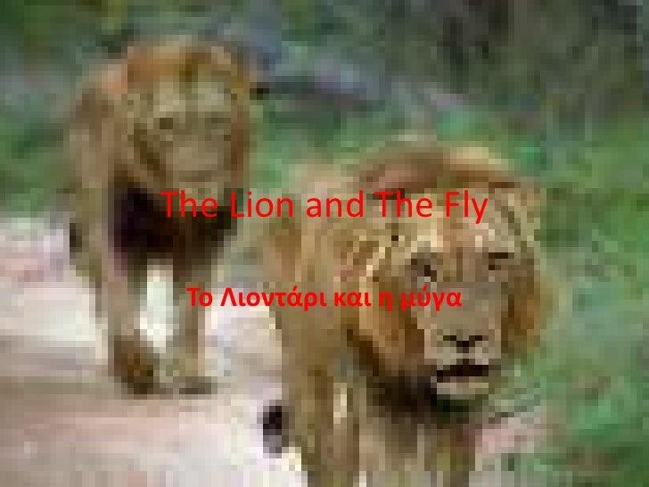 The Lion and The Fly<br />Το Λιοντάρι και η μύγα<br />