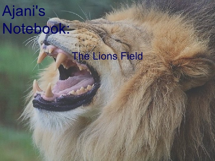 The Lions Field Ajani's Notebook: