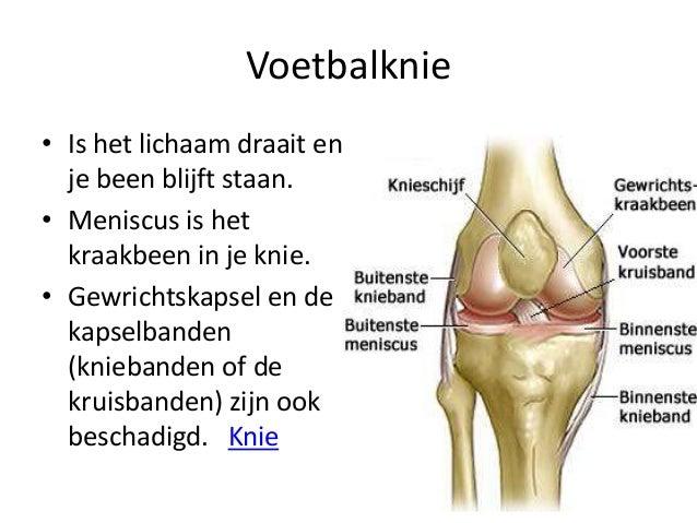 kraakbeen slijtage knie