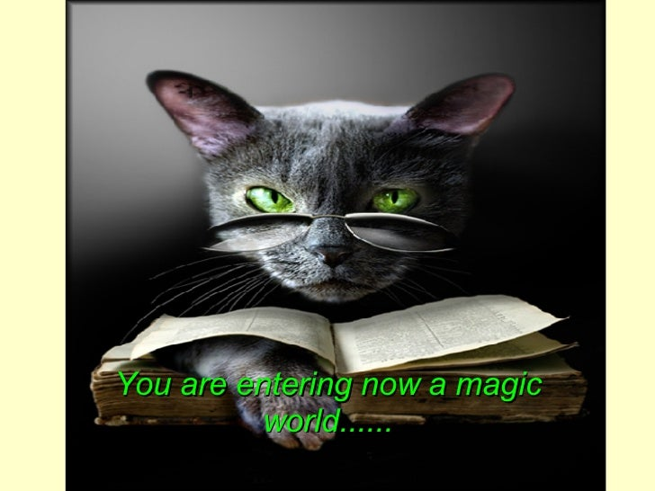 You are entering now a magic world......