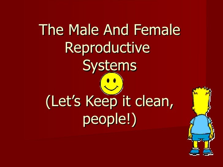 The Male And Female   Reproductive     Systems(Let's Keep it clean,      people!)
