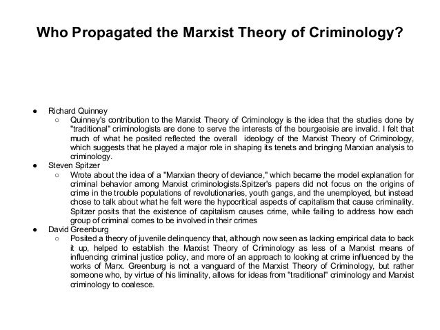 criminology theory essay questions