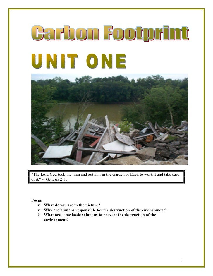 Thematic unit carbon footprint by judy
