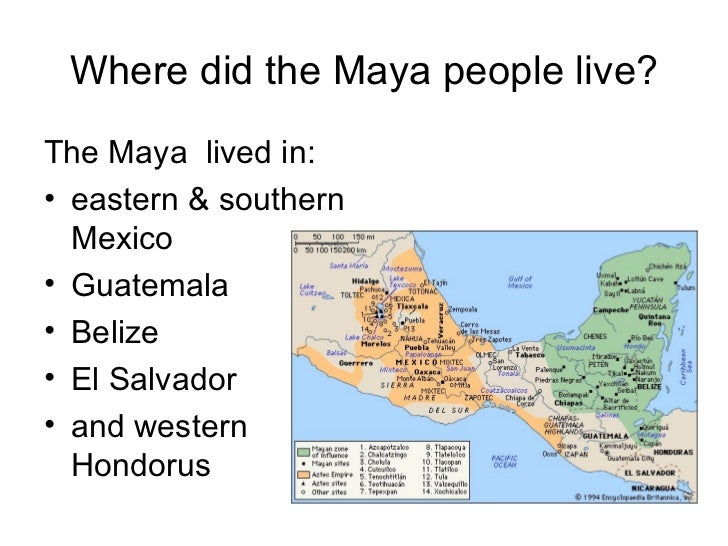 why did the mayan civilization collapse essay