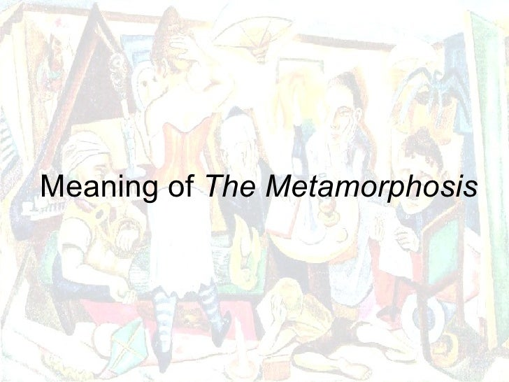 What household object best connects to a theme of the metamorphasis?