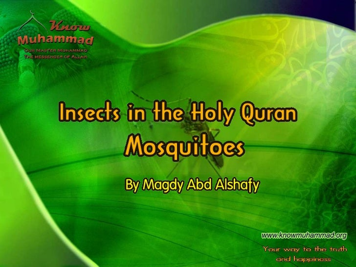 The miraculous creation of mosquitoes  is hinted at the quran