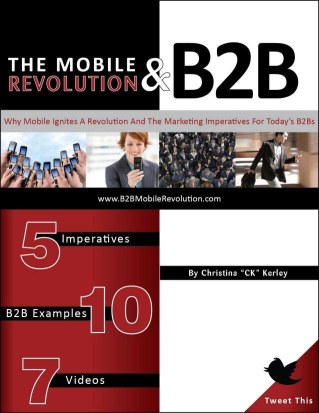 The Mobile Revolution & B2B (eBook)