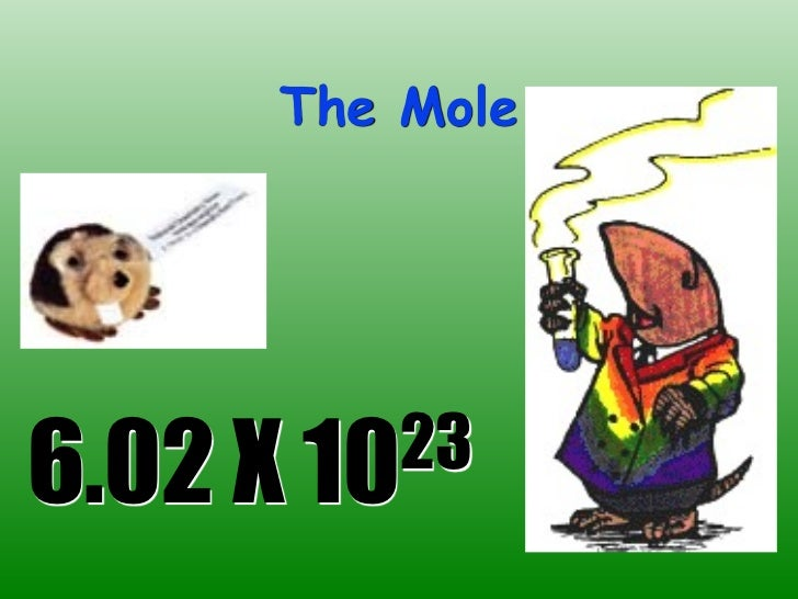 The Mole6.02 X 10 23