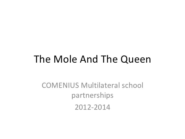 The Mole And The Queen COMENIUS Multilateral school partnerships 2012-2014