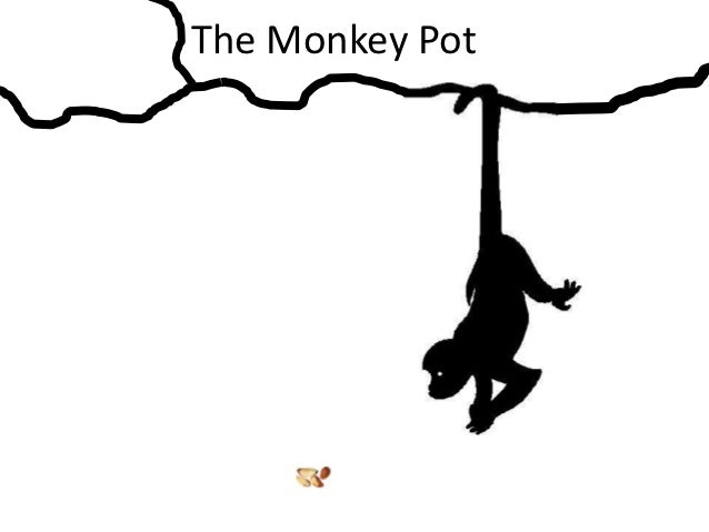 The Monkey Pot