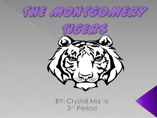 The montgomery tigers