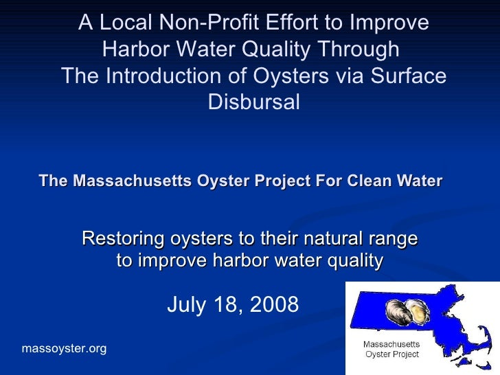 The Massachusetts Oyster Project For Clean Water   Restoring oysters to their natural range to improve harbor water qualit...