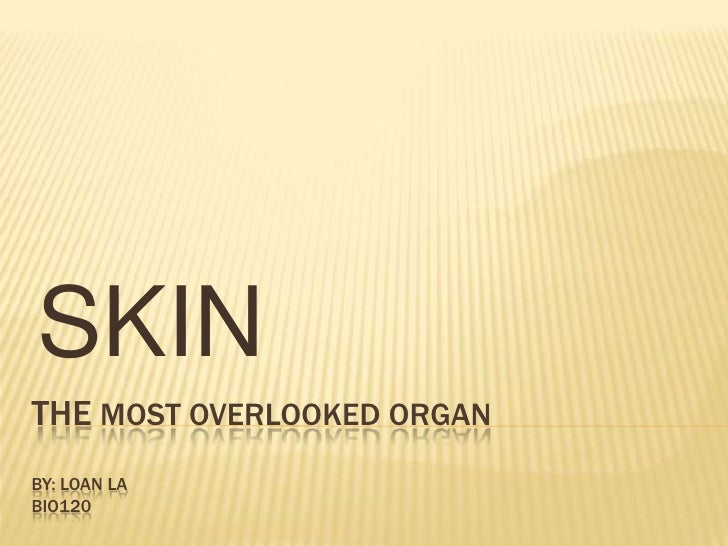 The Most Overlooked organBy: Loan la bio120<br />SKIN<br />
